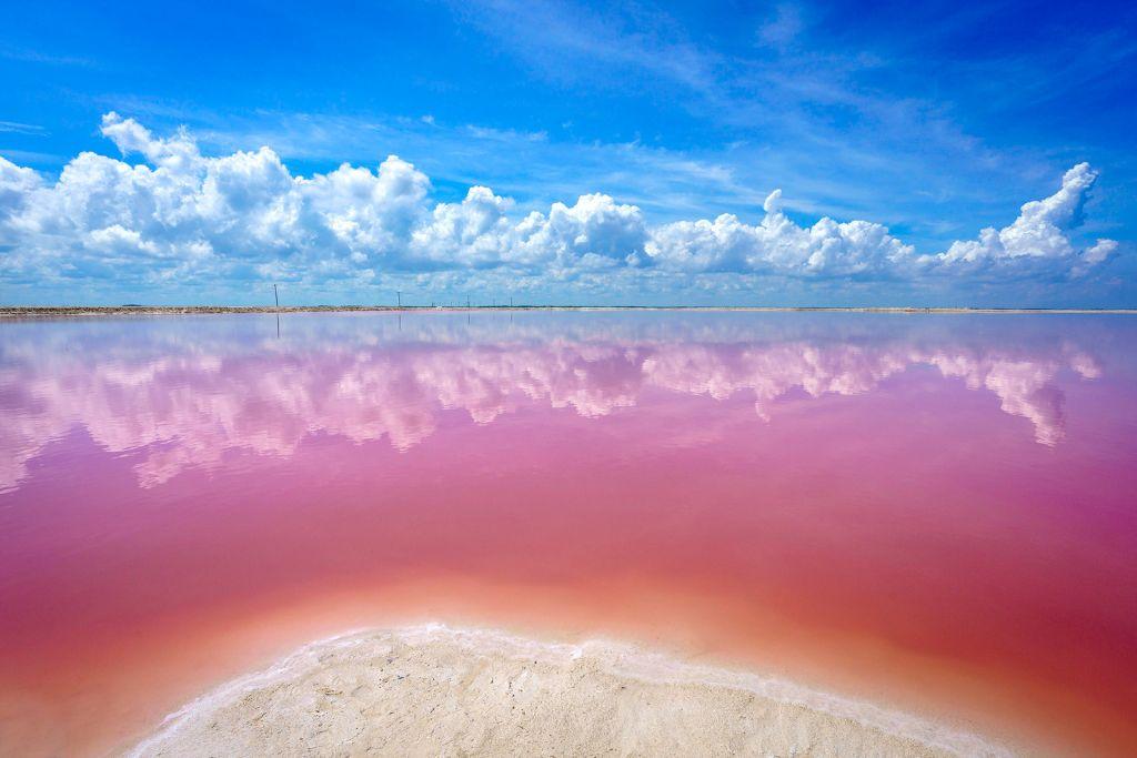 розовое озеро мексика